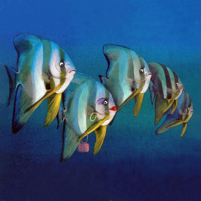 Batfish display art card