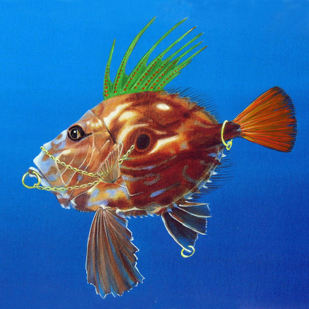 John Dory Punk Art Card