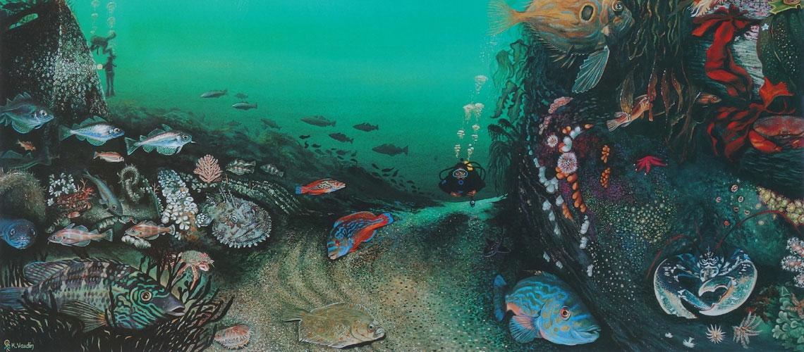 Deep Impressions Underwater Paintings