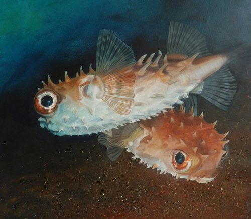 Puffer Fish Original Painting