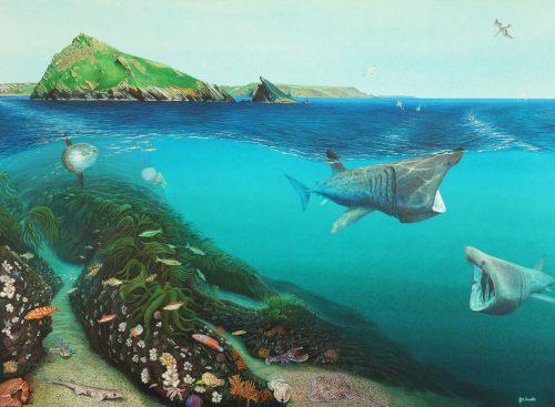 British sea life