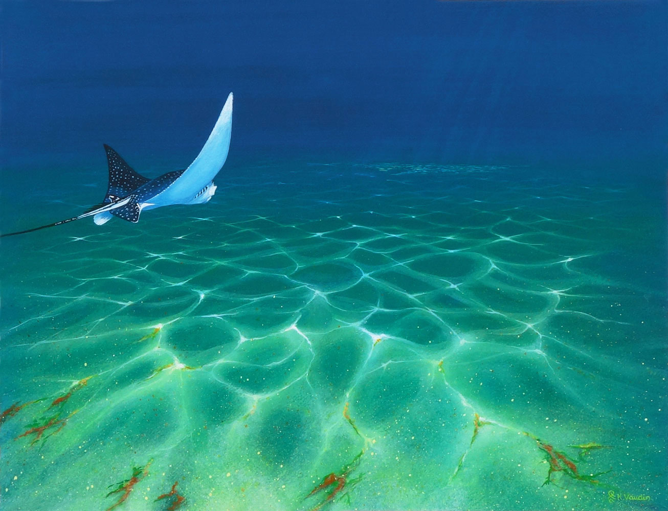 Eagle ray painting Ray of Light