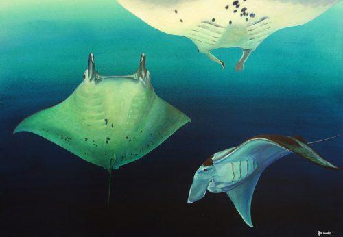 Original painting of manta rays by Deep Impressions underwater art.
