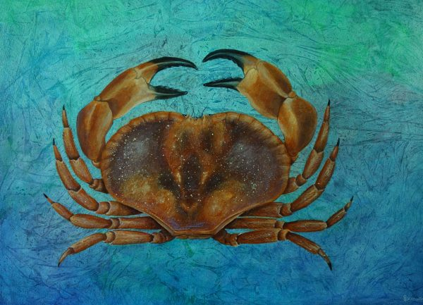 Crab Abstract Painting