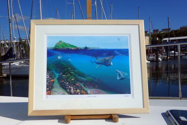 Mewstone Ledges Fine Art Print