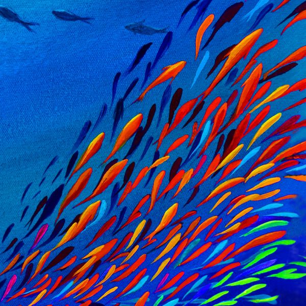 Fish school mini canvas print by Deep Impressions