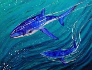 Blue shark art