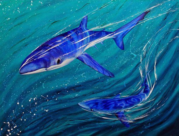 Blue shark art